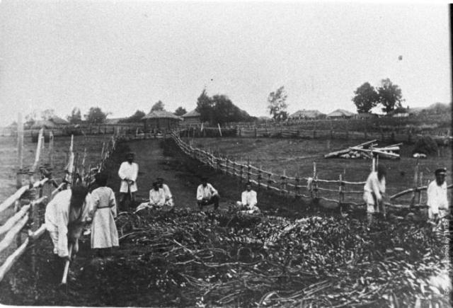 Интересные исторические снимки из прошлого