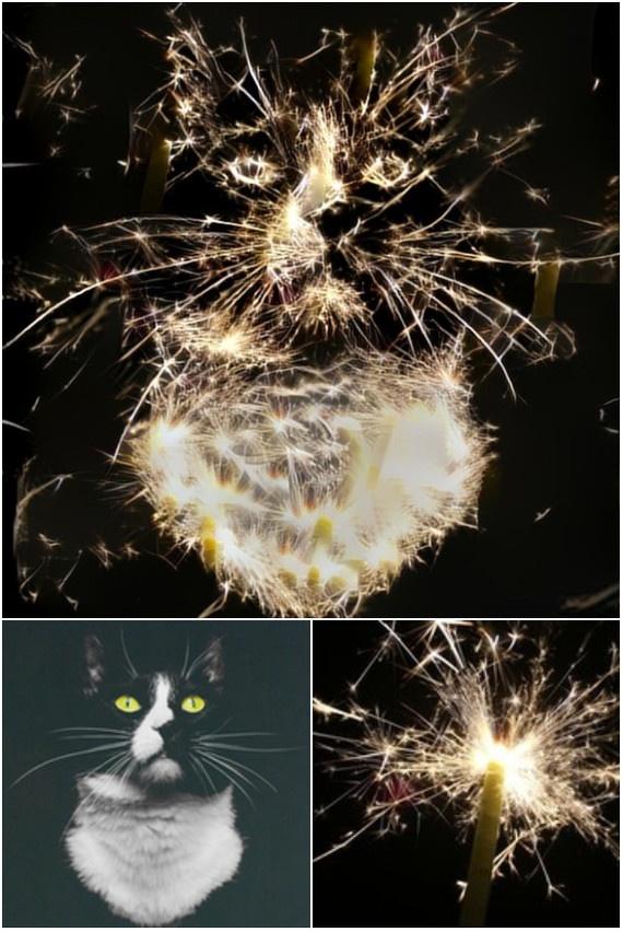 Искусственная нейронная сеть обрабатывает изображения