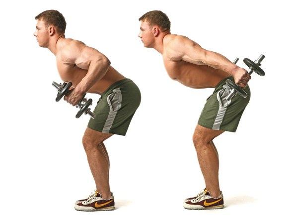 Лучшие упражнения для здоровья спины