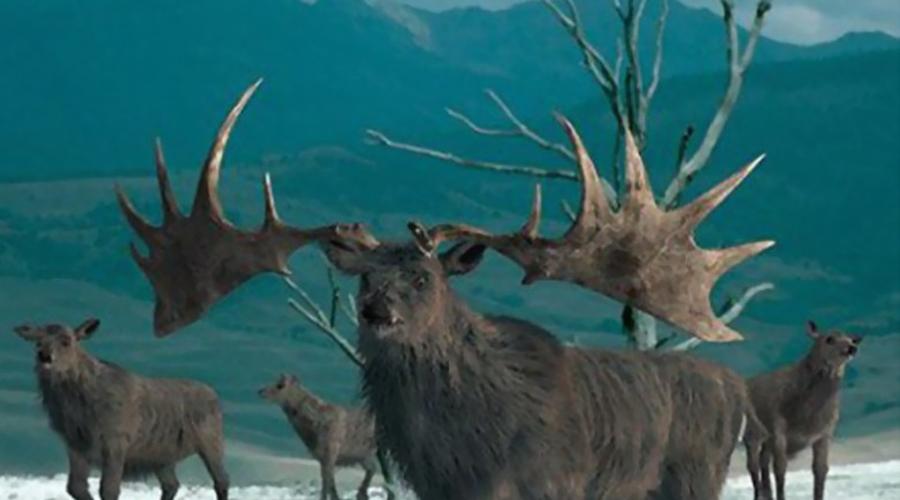 Доисторические животные, которых ученые могут воскресить