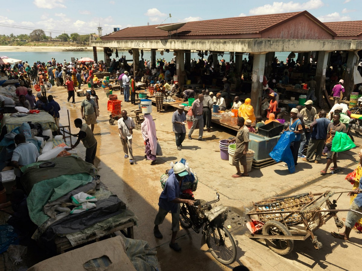 В богатом море Танзании становится все меньше рыбы