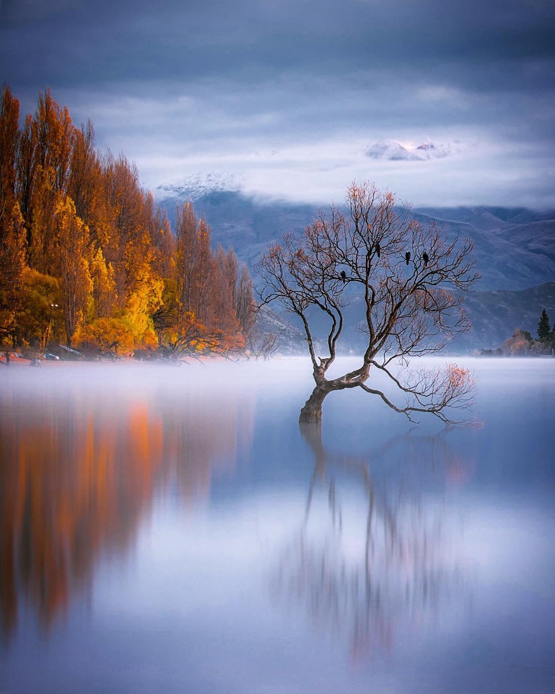 Захватывающие природные фотографии Рейчел Стюарт