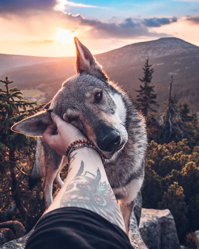 Парень из Чехии путешествует вместе со своим псом