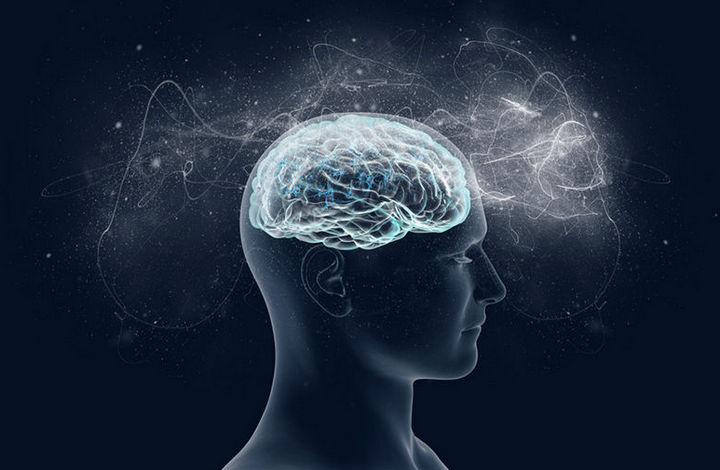 7 странных и необычных фактов о мозге