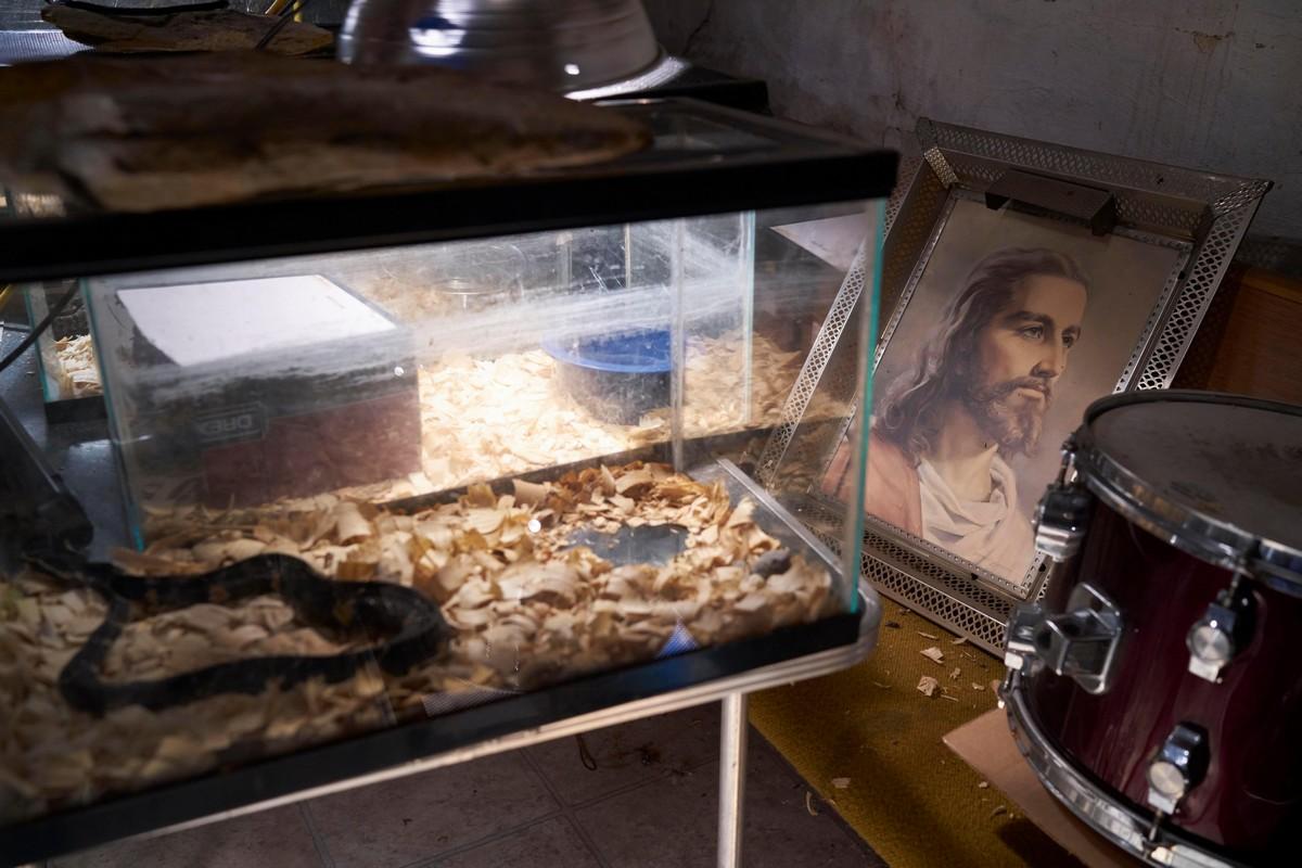 Внутри церкви, где проходят проповеди со змеями и их ядом