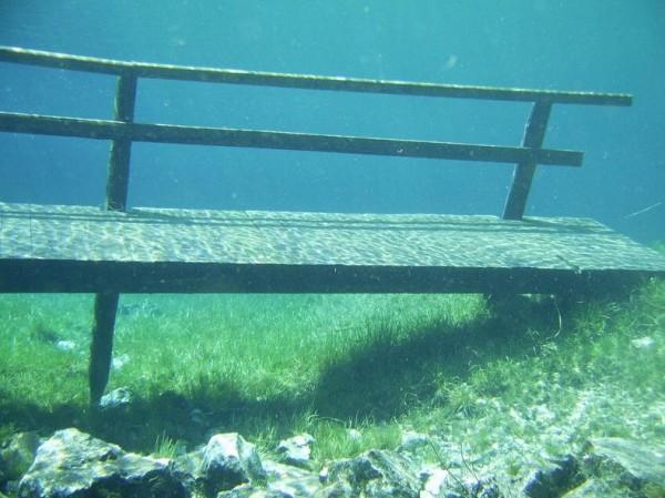 Подводный парк Зеленое озеро