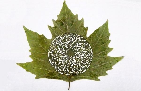Резьба на листьях от Лоренцо Дюрана
