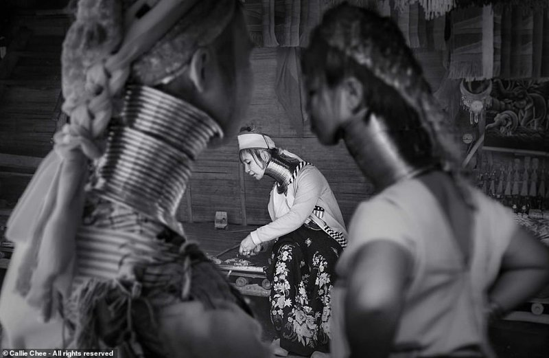 Претенденты на победу в Smithsonian Photo Contest 2018