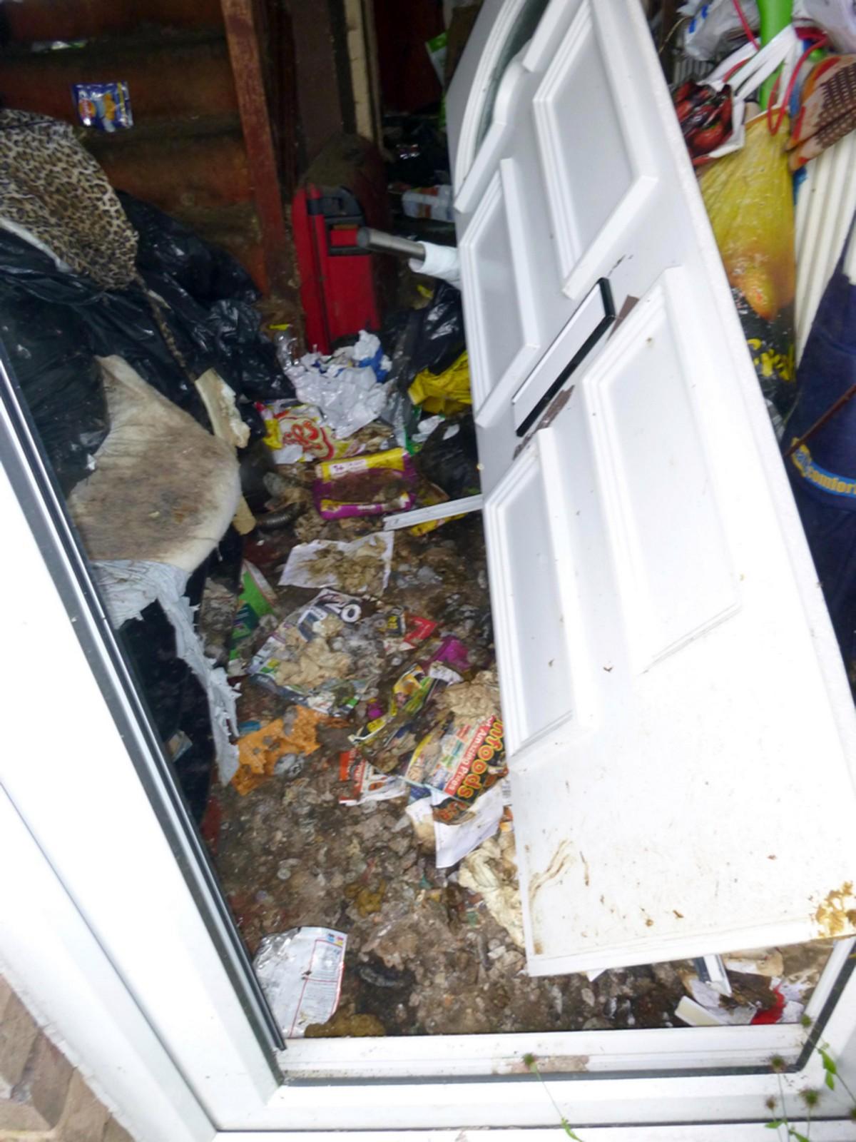 49-летней грязнуле запретили держать домашних животных (ФОТО)