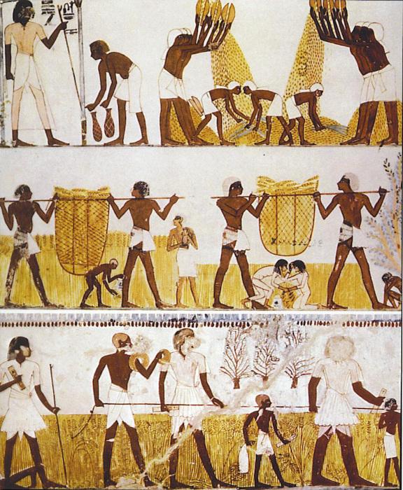 Необычные формы древних денег разных народов