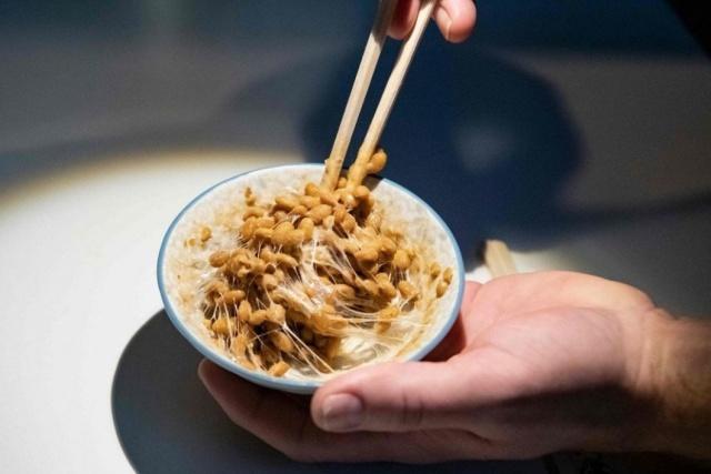 Странные экспонаты Музея отвратительной еды в Швеции