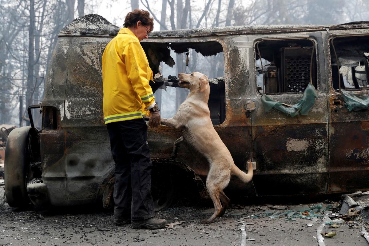 Последствия самого сильного пожара в Калифорнии