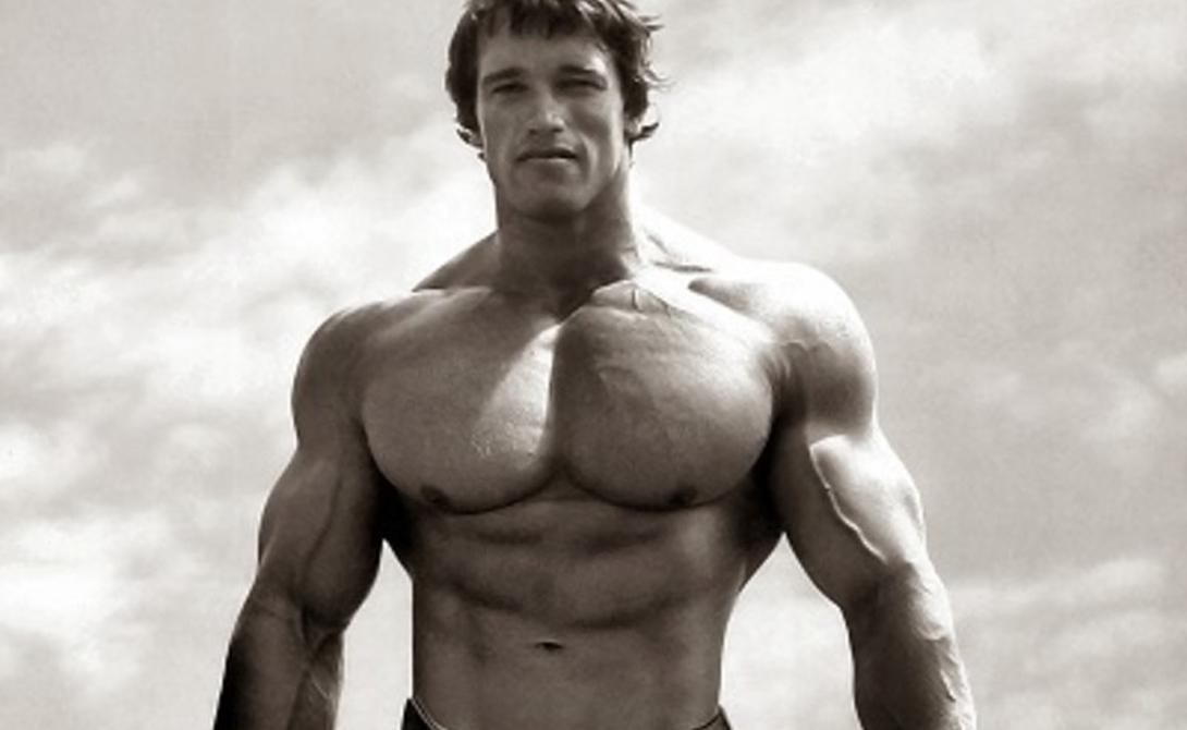 Какие упражнения помогут накачать мощную грудь
