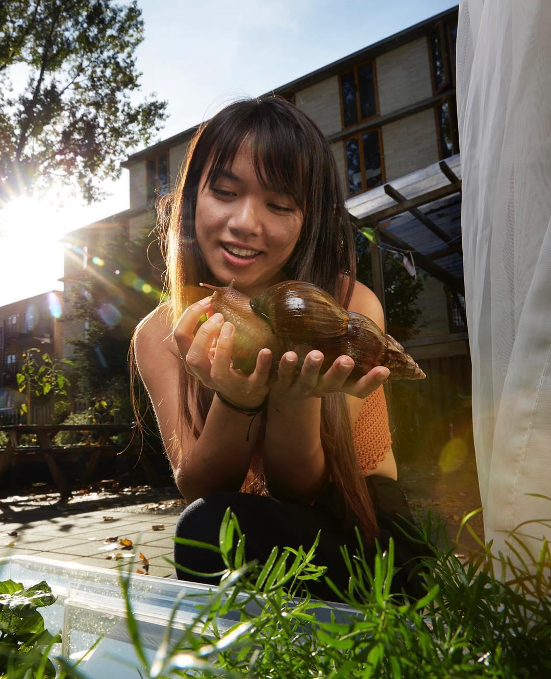 Снимки официального фотографа животных Амстердама