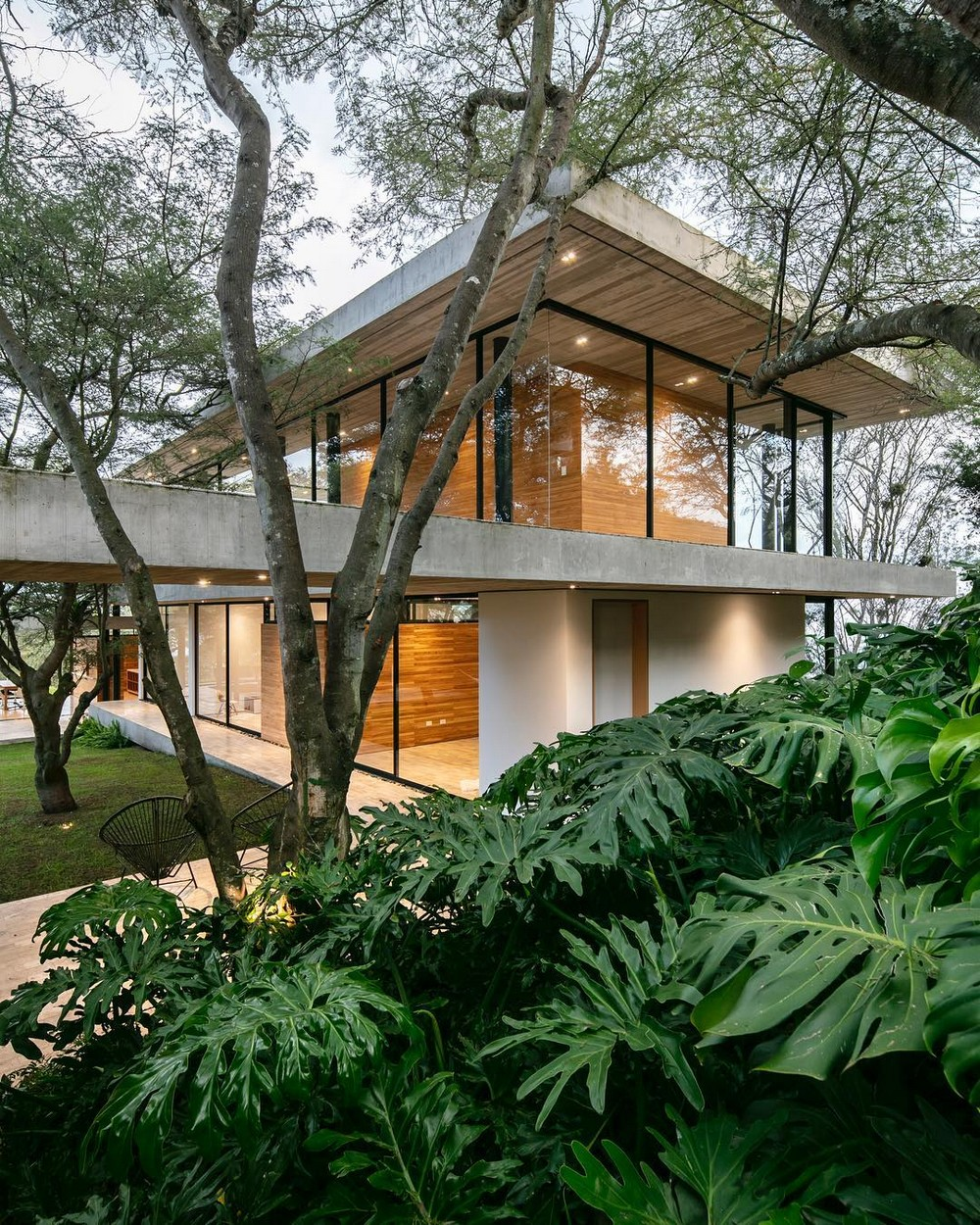 Дом среди деревьев в Эквадоре
