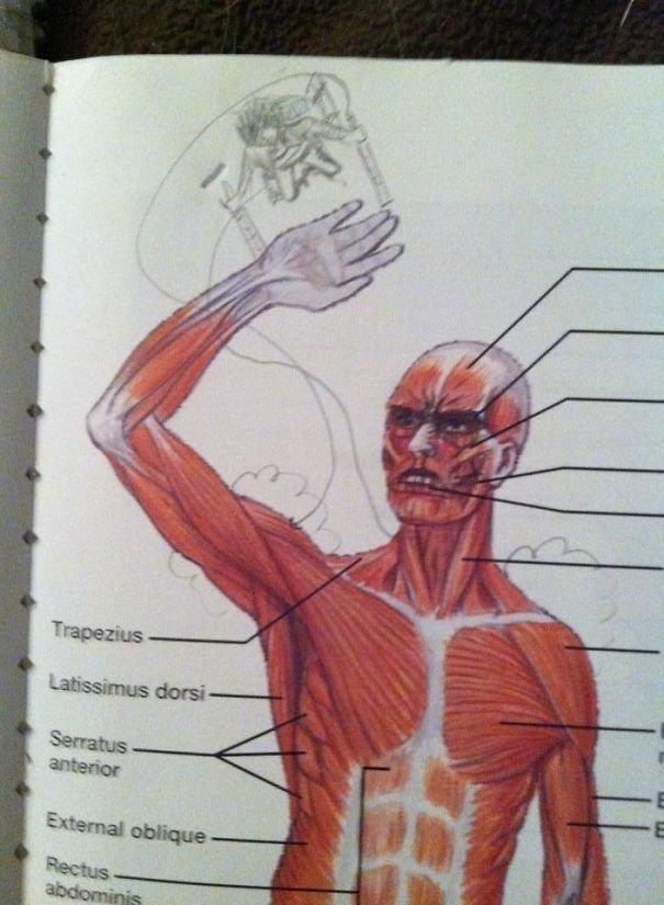 Рисунки и художества в школьных учебниках
