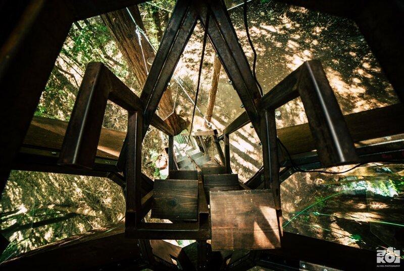Домик на дереве от американского дизайнера