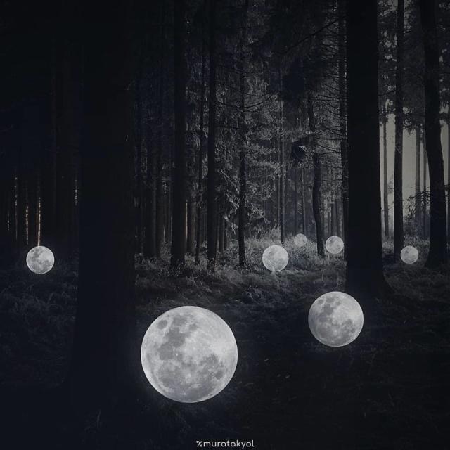 Фотоманипуляции от турецкого дизайнера Мурата Акйола