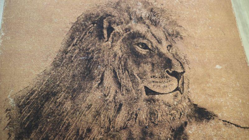 Парикмахер создает картины из срезанных волос