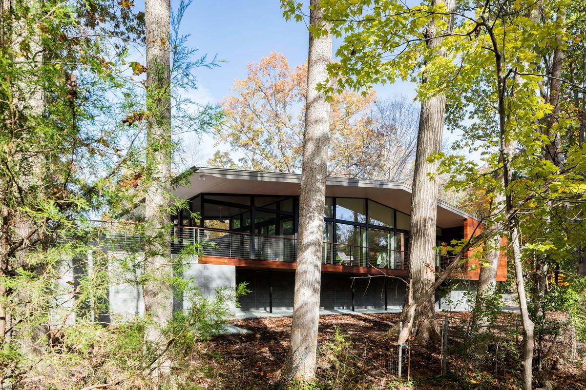Эффектный лесной дом в США
