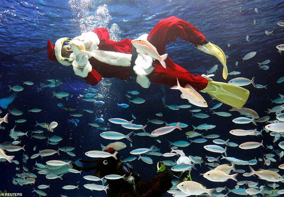 Чудесное Рождественское время в разных странах