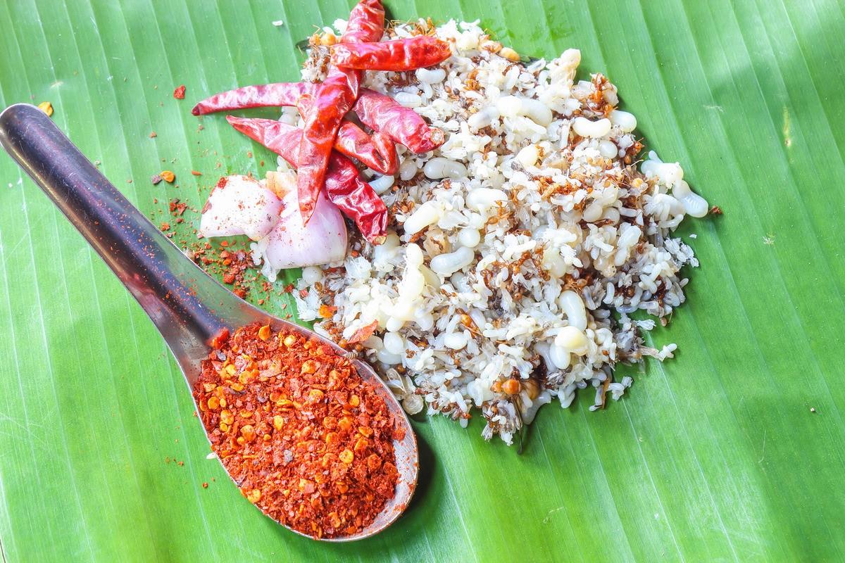 Странные и необычные блюда из Таиланда