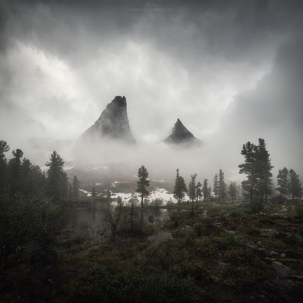 Конкурс лучших фотографий дикой природы России 2018