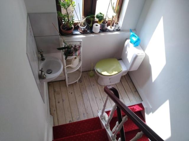 Подборка самых странных туалетов