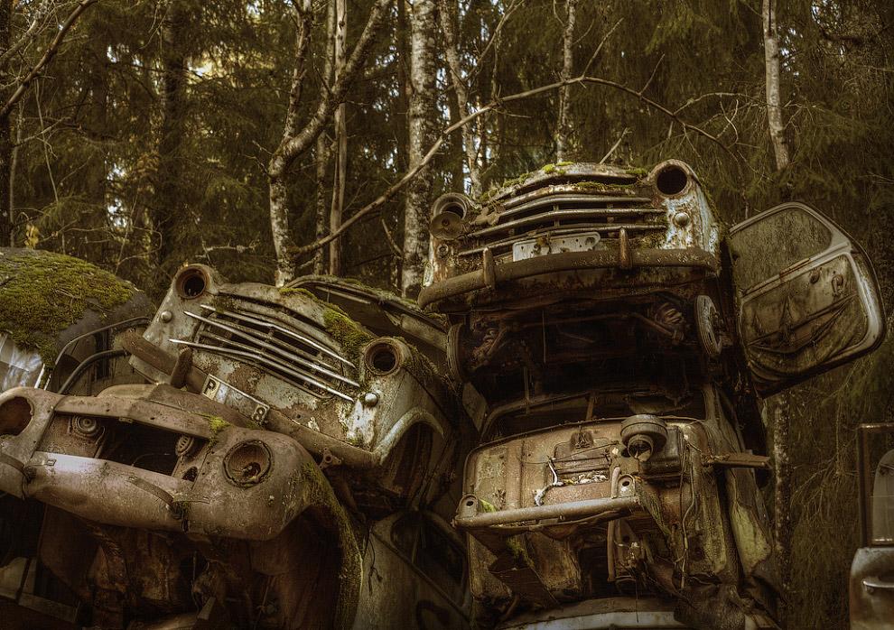 Кладбище автомобилей в лесах на юге Швеции
