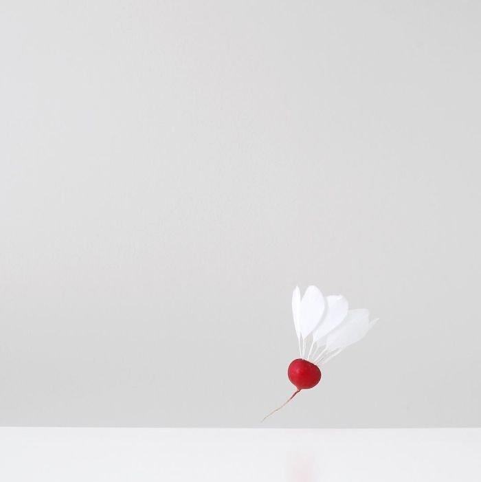 Лёгкие минималистичные фотографии от Пичайи Баррэу