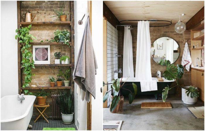 Оазис в квартире: растения как элемент декора