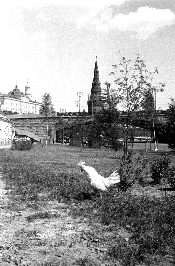 Архивные исторические снимки из прошлого