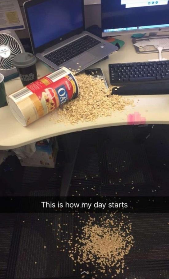 Их день не задался с самого утра