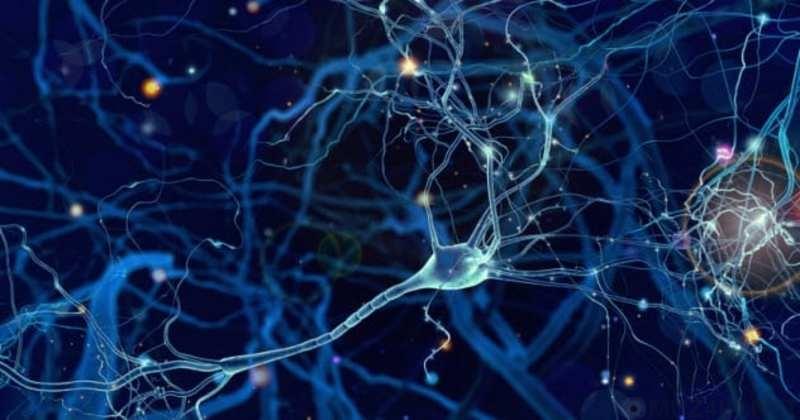 Интересные факты о памяти, которых вы не знали