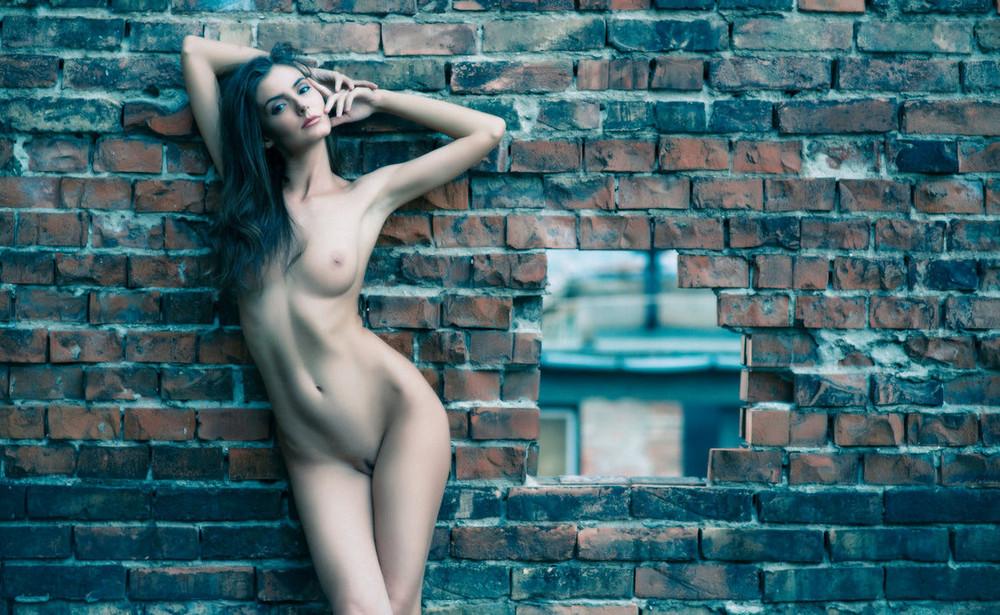 Nude girl canvas print erotic art sexy girl wall art naked