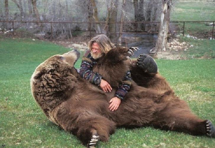 Милые животы животных, которые хочется почесать немедленно