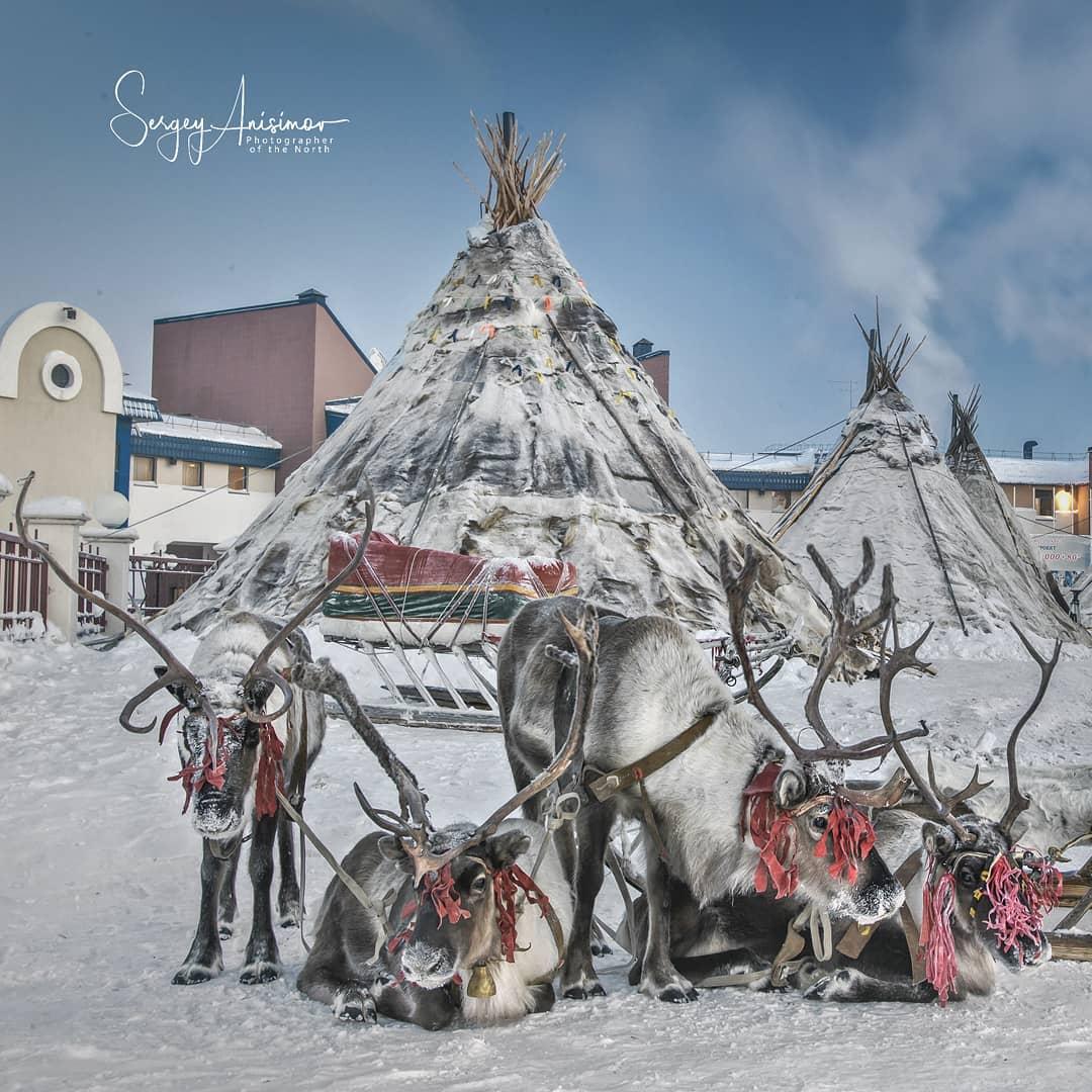 Повседневная жизнь Северо-Западной Сибири на снимках Сергея Анисимова