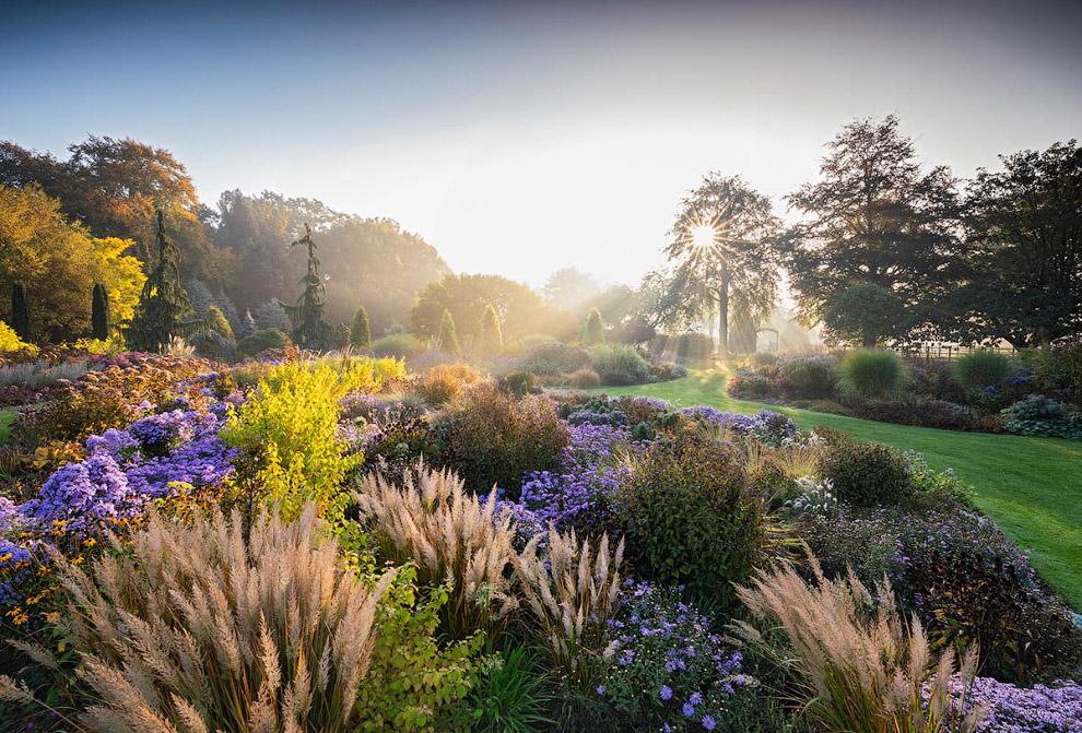 Конкурс лучших садово-парковых фотографий 2019