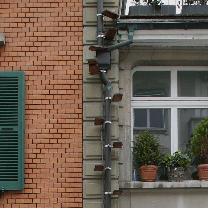 Разнообразие лестниц для кошек в Швейцарии