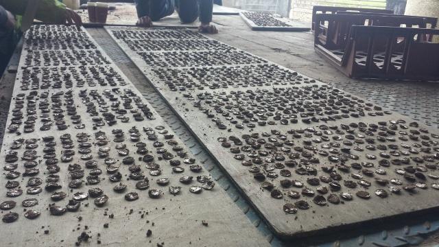 Семейная пара кладоискателей нашла огромный клад серебряных монет