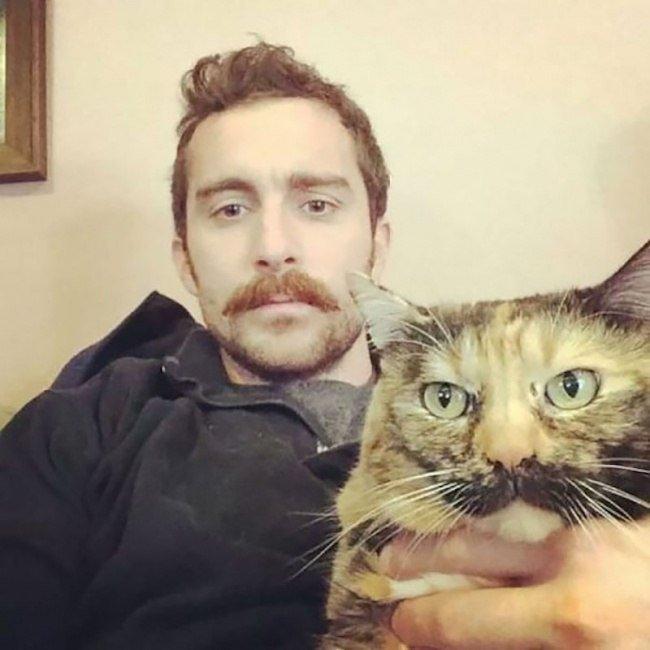 Когда кот с хозяином на одной волне