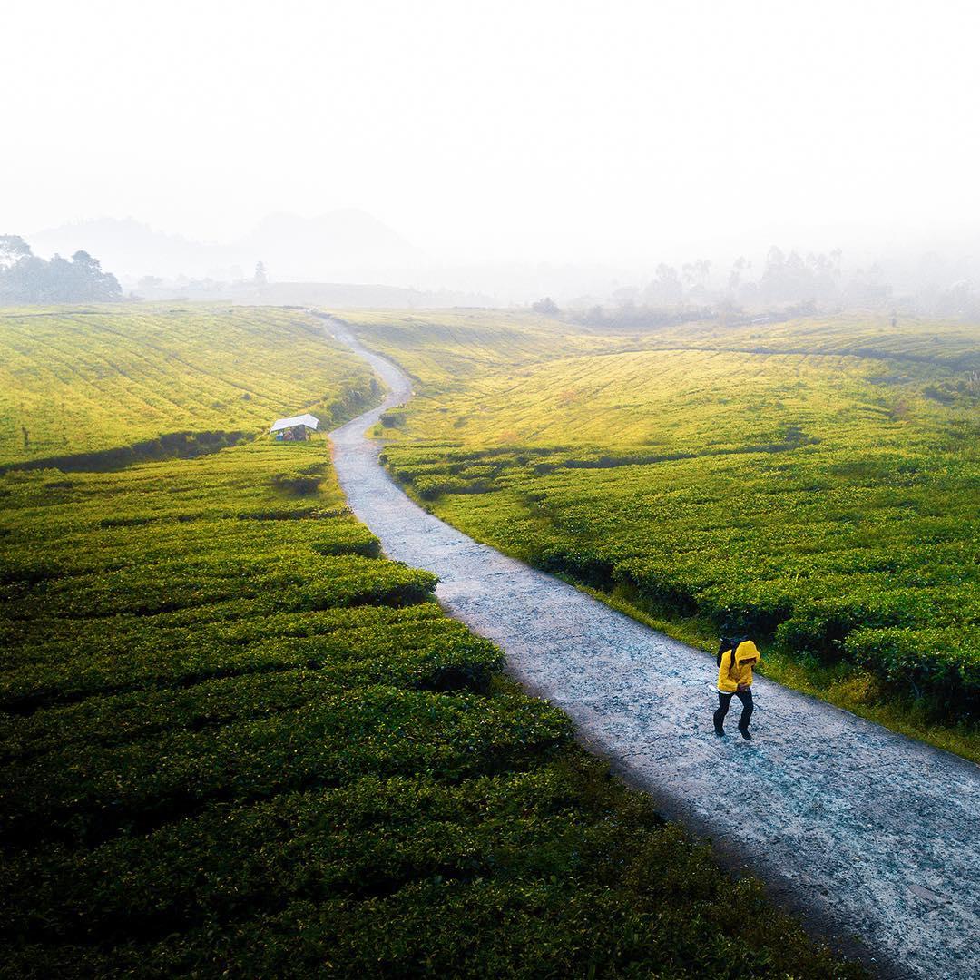 Природные и городские пейзажи из путешествий Фелгра Йогатама