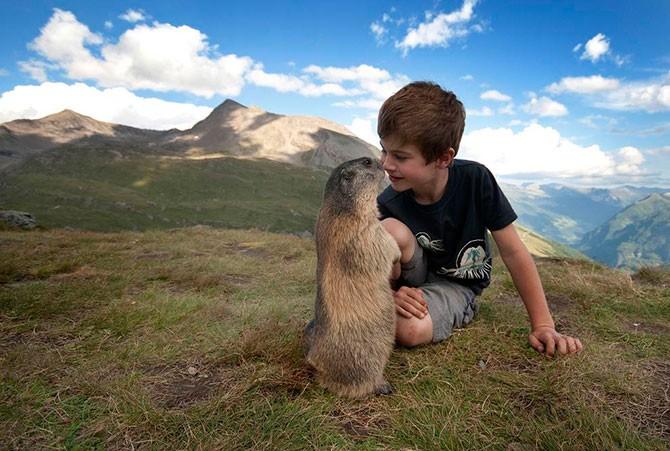 Маленький заклинатель альпийских сурков