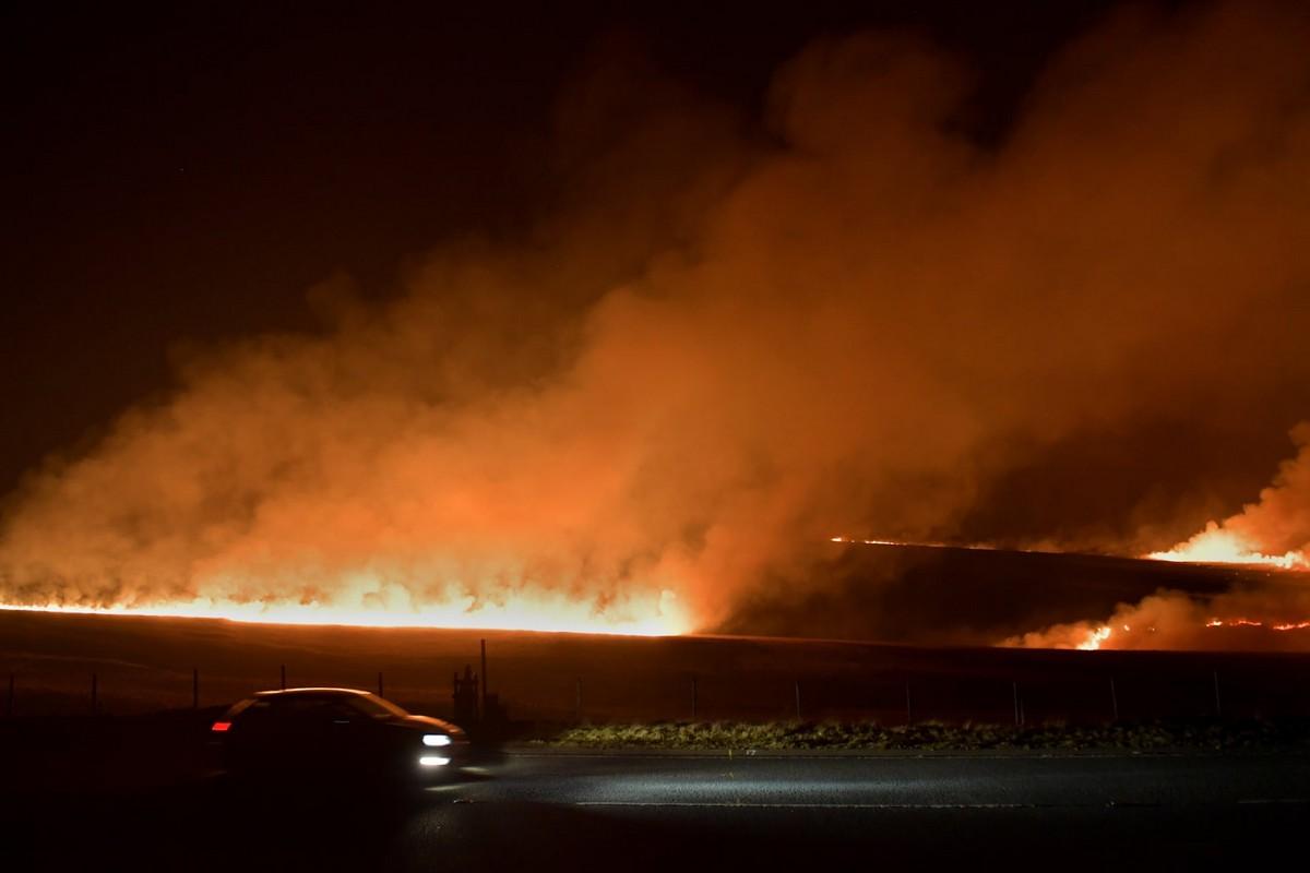 Лесные пожары в Великобритании