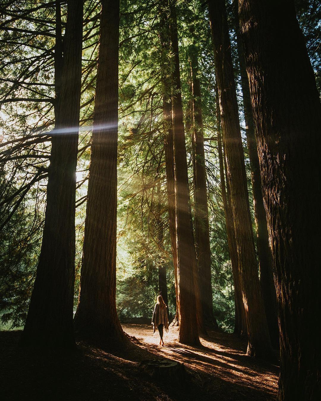 Природа и путешествия на снимках Джеймса Артура