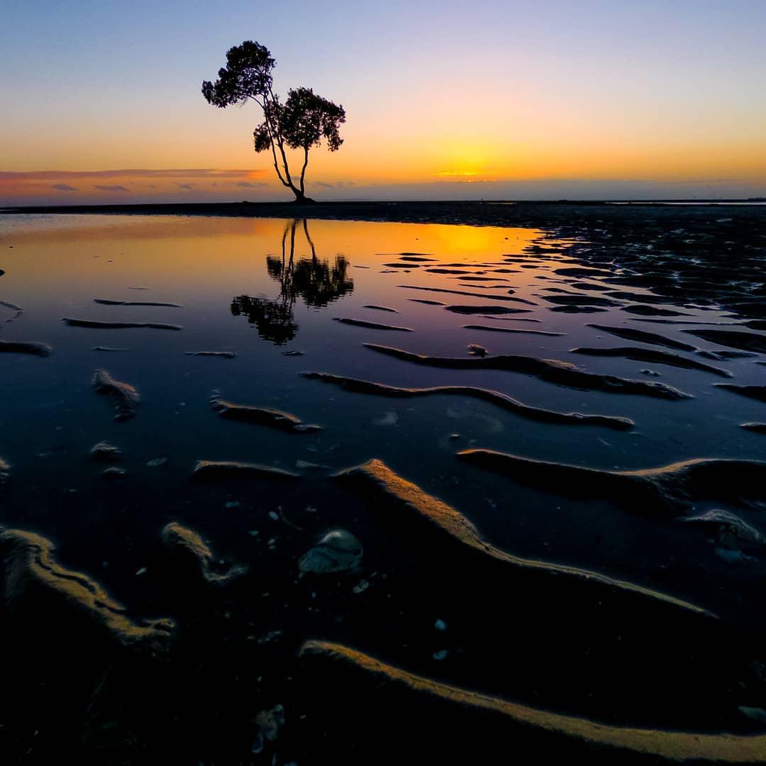 Природные и городские пейзажи Австралии от Митчелла Петтигрю