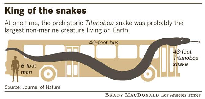 Титанобоа – древняя змея-монстр