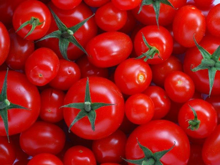 Как подольше сохранить продукты свежими