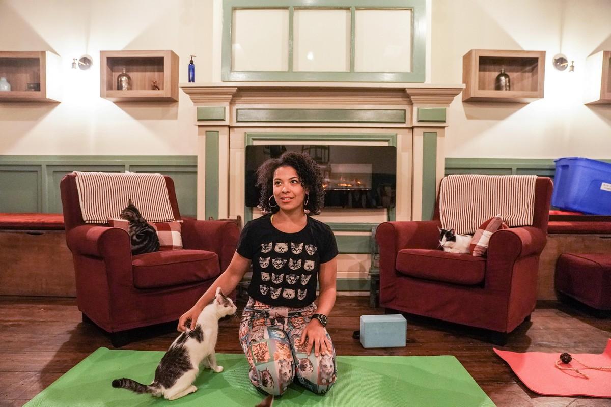 Йога с кошками в Нью-Йорке