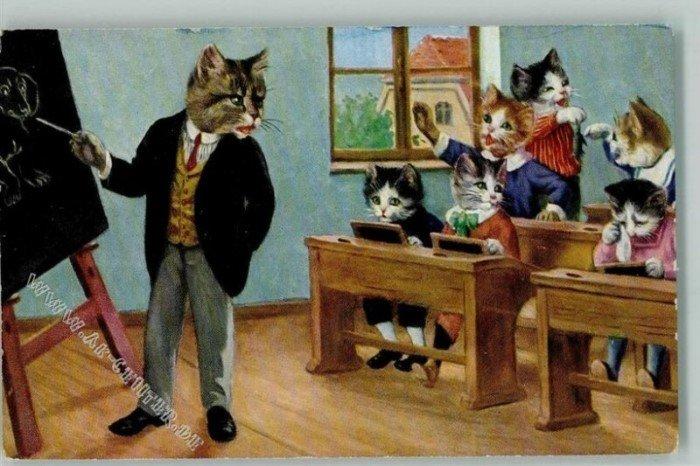 Немецкие ученые котики на старых открытках